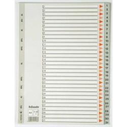 Esselte - Esselte A4 PP Seperatör 1-31 Rakam